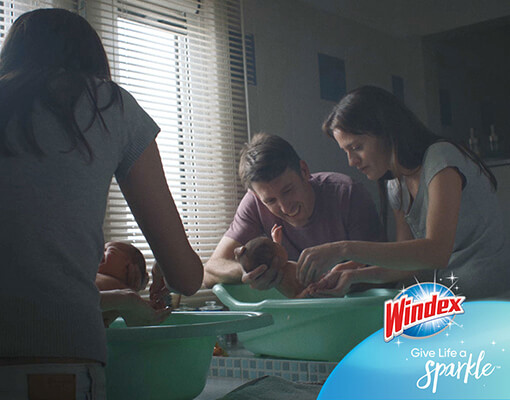 Windex homepage story of lucy commercial